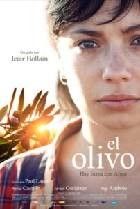 olive tree poster 2
